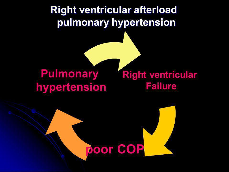 Right ventricular afterload pulmonary hypertension Right ventricular Failure poor COP Pulmonary hypertension