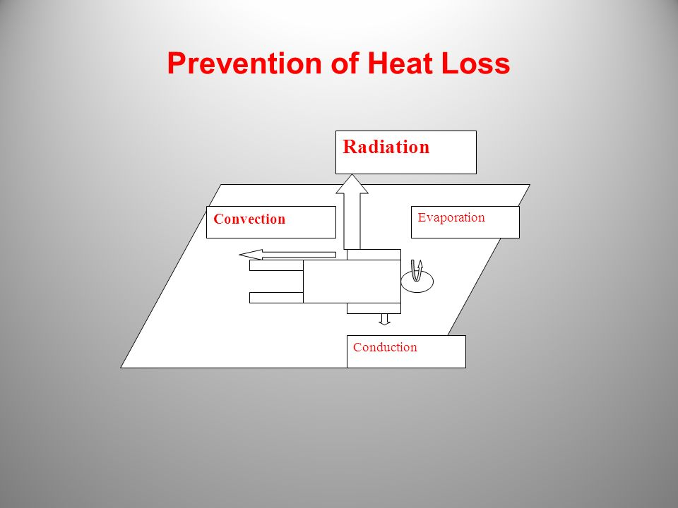 Prevention of Heat Loss Radiation Evaporation Conduction Convection