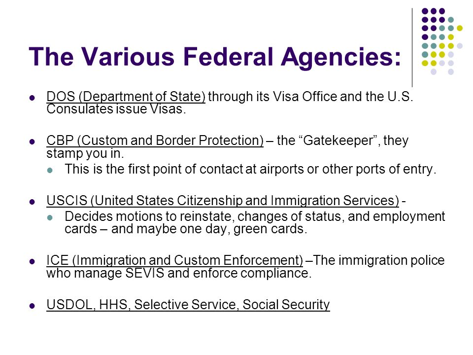 The Various Federal Agencies: DOS (Department of State) through its Visa Office and the U.S. Consulates issue Visas. CBP (Custom and Border Protection