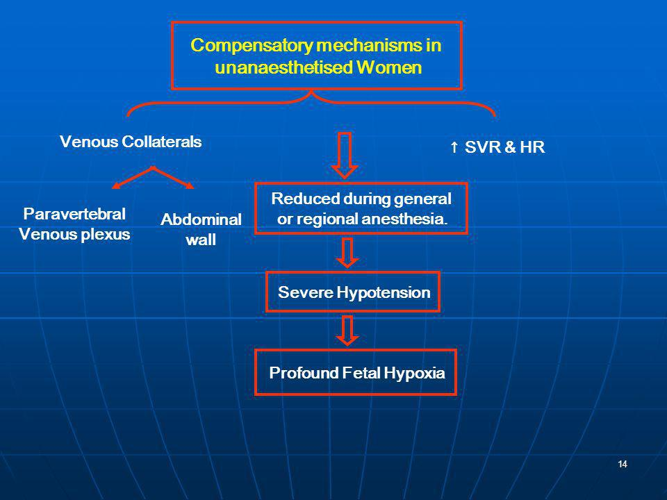 14 Compensatory mechanisms in unanaesthetised Women Venous Collaterals Paravertebral Venous plexus Abdominal wall SVR & HR Reduced during general or r