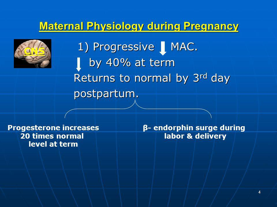 4 Maternal Physiology during Pregnancy 1) Progressive MAC. 1) Progressive MAC. by 40% at term by 40% at term Returns to normal by 3 rd day Returns to