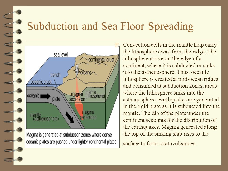 Subduction and Sea Floor Spreading 4 Convection cells in the mantle help carry the lithosphere away from the ridge. The lithosphere arrives at the edg
