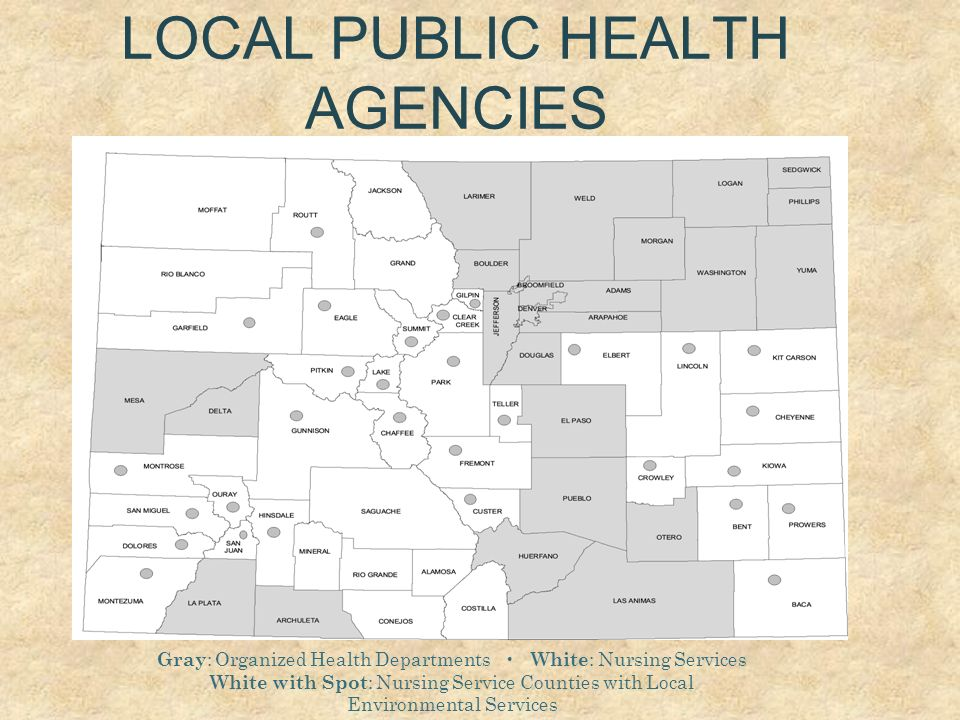 LOCAL PUBLIC HEALTH AGENCIES Gray : Organized Health Departments White : Nursing Services White with Spot : Nursing Service Counties with Local Enviro