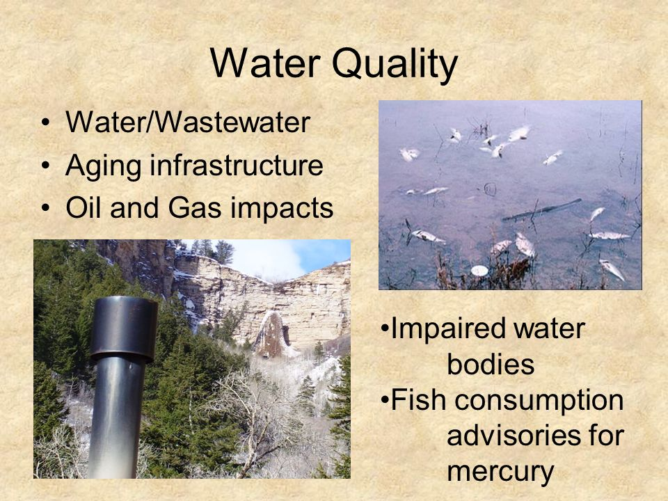Water Quality Water/Wastewater Aging infrastructure Oil and Gas impacts Impaired water bodies Fish consumption advisories for mercury