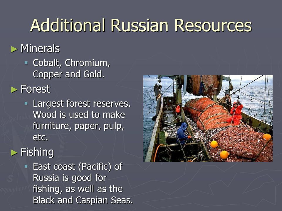 Additional Russian Resources Minerals Minerals Cobalt, Chromium, Copper and Gold. Cobalt, Chromium, Copper and Gold. Forest Forest Largest forest rese