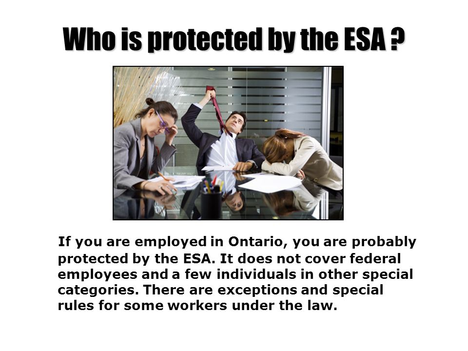 Who is protected by the ESA ? If you are employed in Ontario, you are probably protected by the ESA. It does not cover federal employees and a few ind