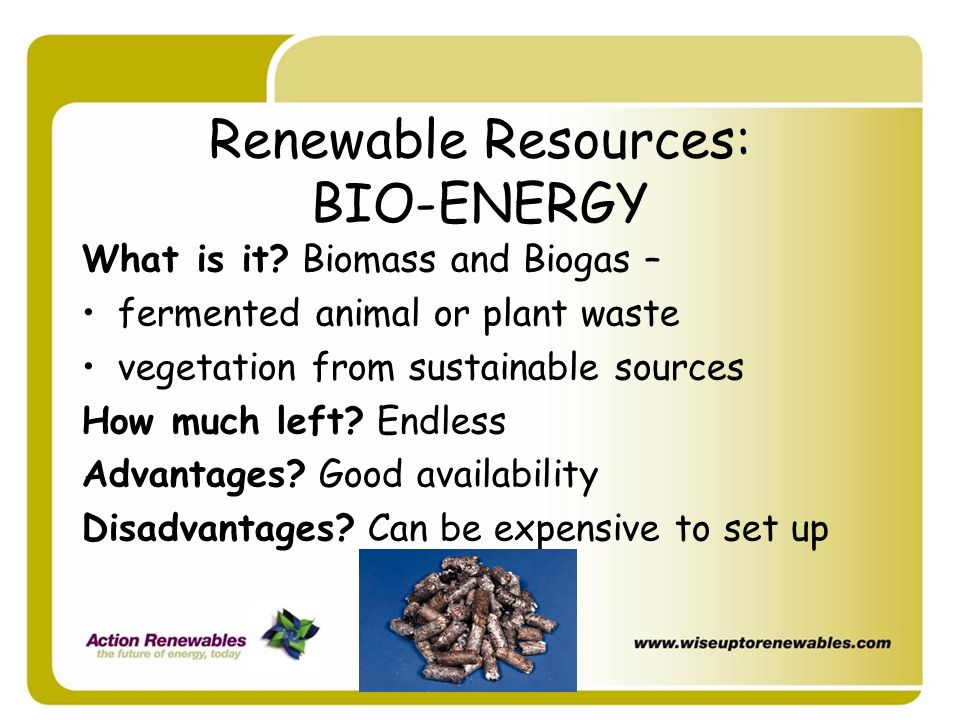 Renewable Resources: BIO-ENERGY What is it? Biomass and Biogas – fermented animal or plant waste vegetation from sustainable sources How much left? En