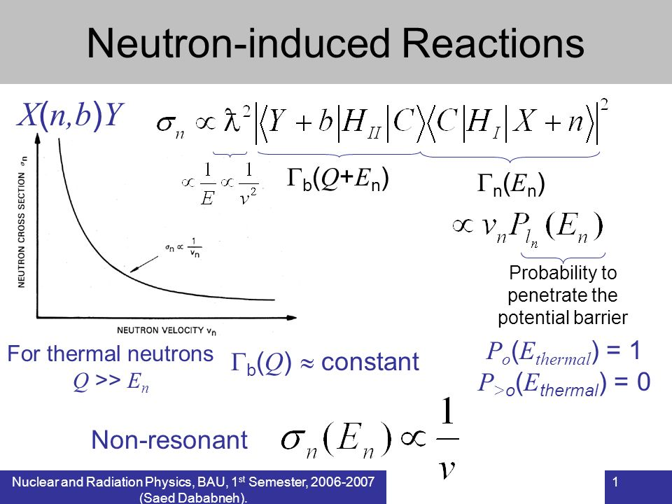 Nuclear and Radiation Physics, BAU, 1 st Semester, 2006-2007 (Saed Dababneh). 1 Neutron-induced Reactions X ( n,b ) Y n ( E n ) b ( Q + E n ) For ther