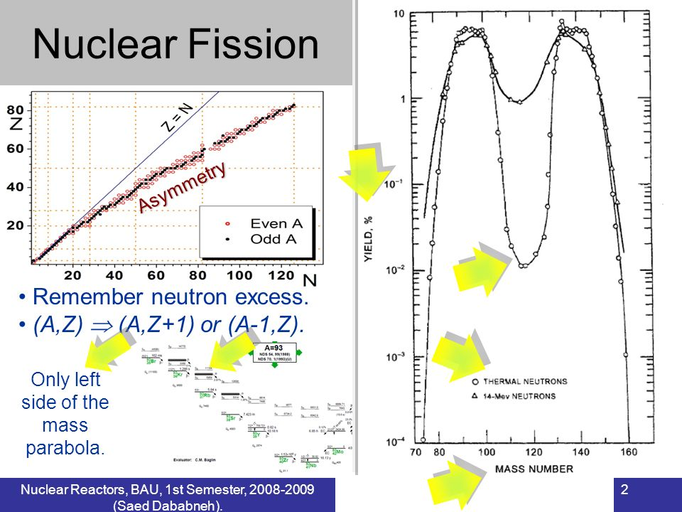 2 Nuclear FissionAsymmetry Remember neutron excess. (A,Z) (A,Z+1) or (A-1,Z). Only left side of the mass parabola.