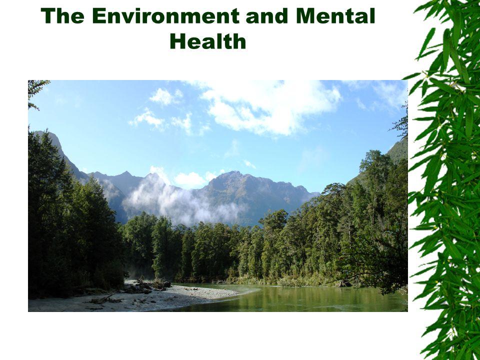 Self Assessment Environmental/Community Self Assessments