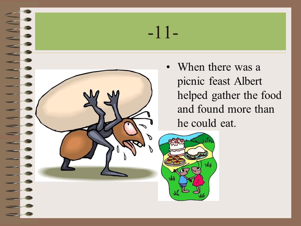 -11- When there was a picnic feast Albert helped gather the food and found more than he could eat.