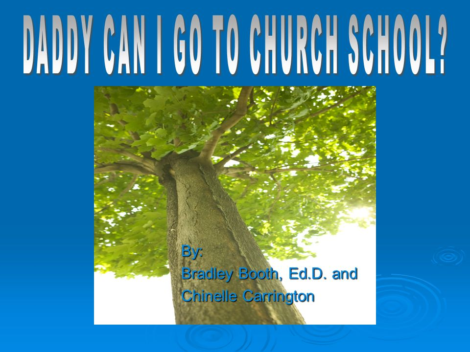Table of Contents Section 1 - Slides 4–12: Research Article Daddy Can I Go To Church School Section 2 - Slides 13–18: Poem – A Childs Plea Section 3 - Slides 19–21: Survey 1: Family Practices Section 4 - Slides 22–23: Survey 2: Benefits of A Christian Education Section 5 - Slides 24-27: Biblical & E.