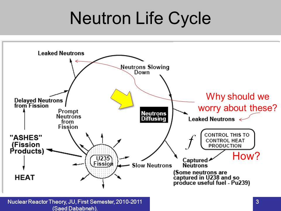 3Nuclear Reactor Theory, JU, First Semester, 2010-2011 (Saed Dababneh). Neutron Life Cycle Why should we worry about these? How?