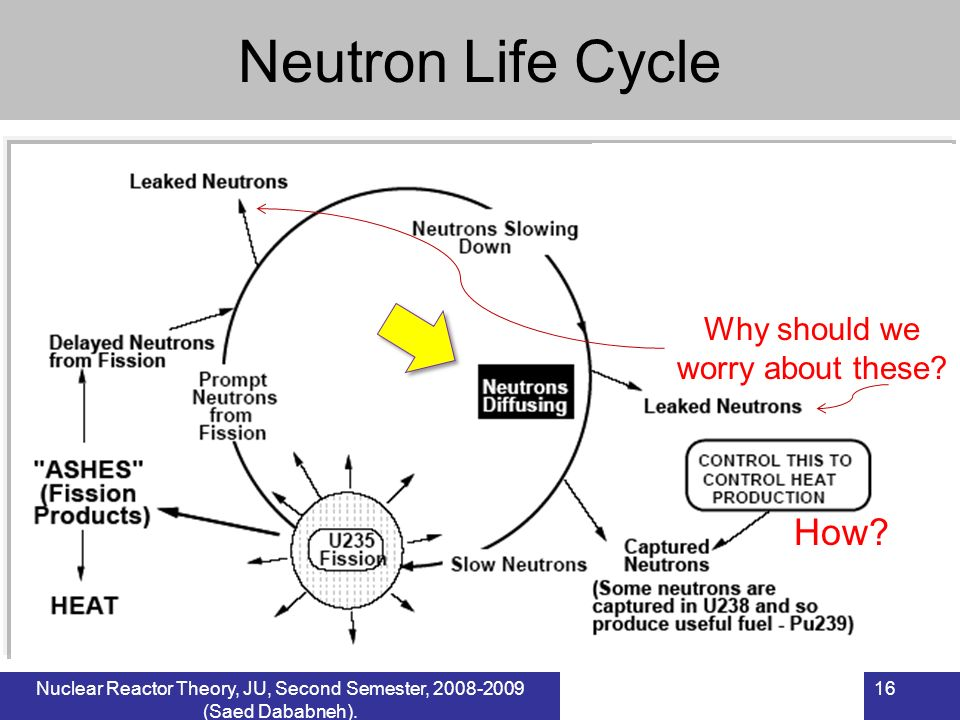 16Nuclear Reactor Theory, JU, Second Semester, 2008-2009 (Saed Dababneh). Neutron Life Cycle Why should we worry about these? How?