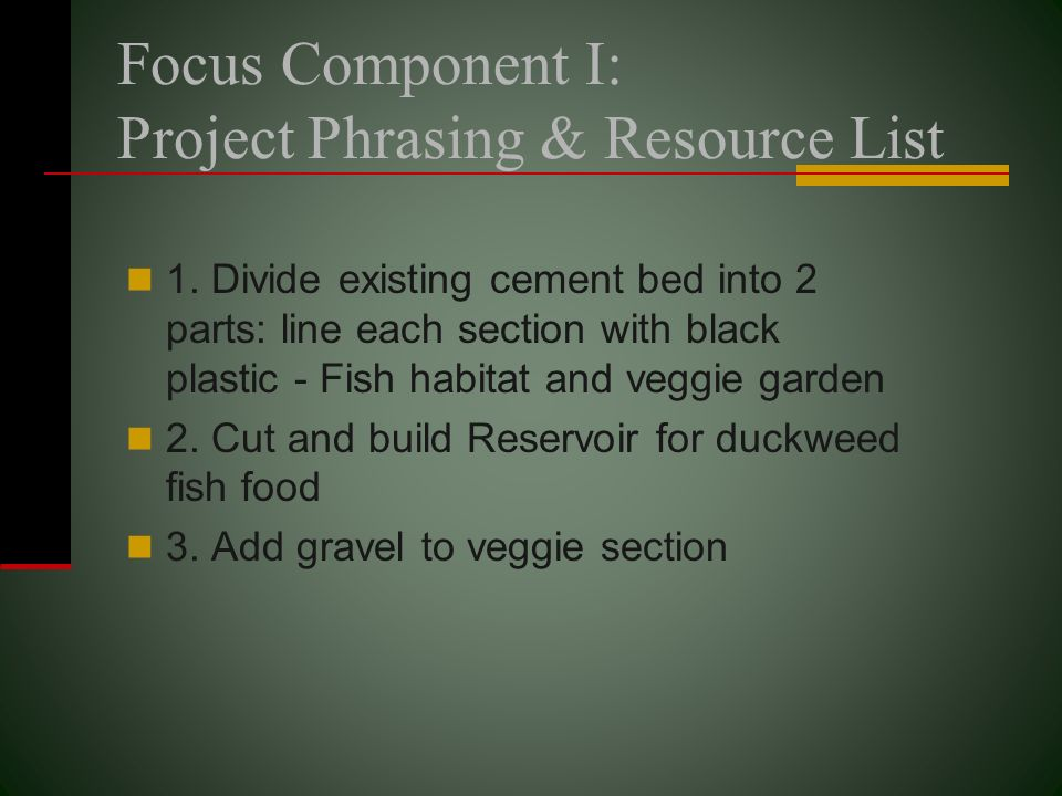 Focus Component I: Project Phrasing & Resource List 1. Divide existing cement bed into 2 parts: line each section with black plastic - Fish habitat an