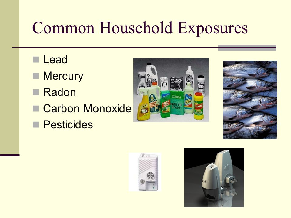 Common Household Exposures Lead Mercury Radon Carbon Monoxide Pesticides