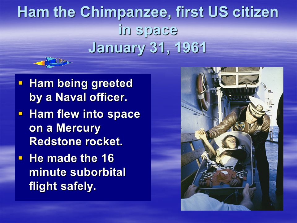 Ham the Chimpanzee, first US citizen in space January 31, 1961 Ham being greeted by a Naval officer. Ham being greeted by a Naval officer. Ham flew in