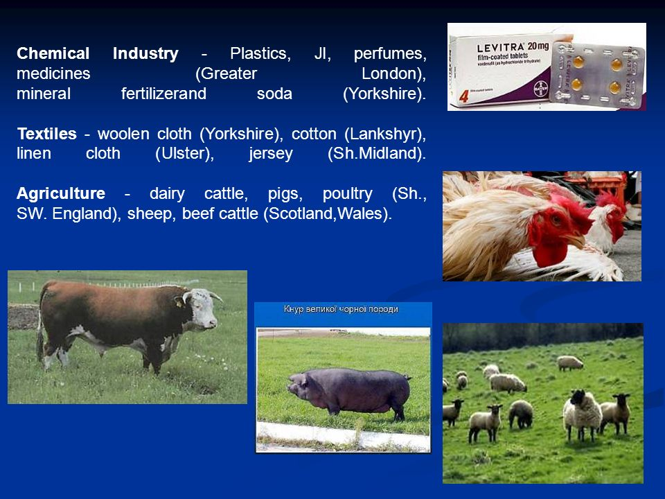 Chemical Industry - Plastics, JI, perfumes, medicines (Greater London), mineral fertilizerand soda (Yorkshire).