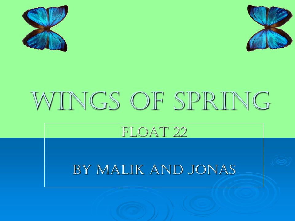 Wings of spring Float 22 By malik and jonas