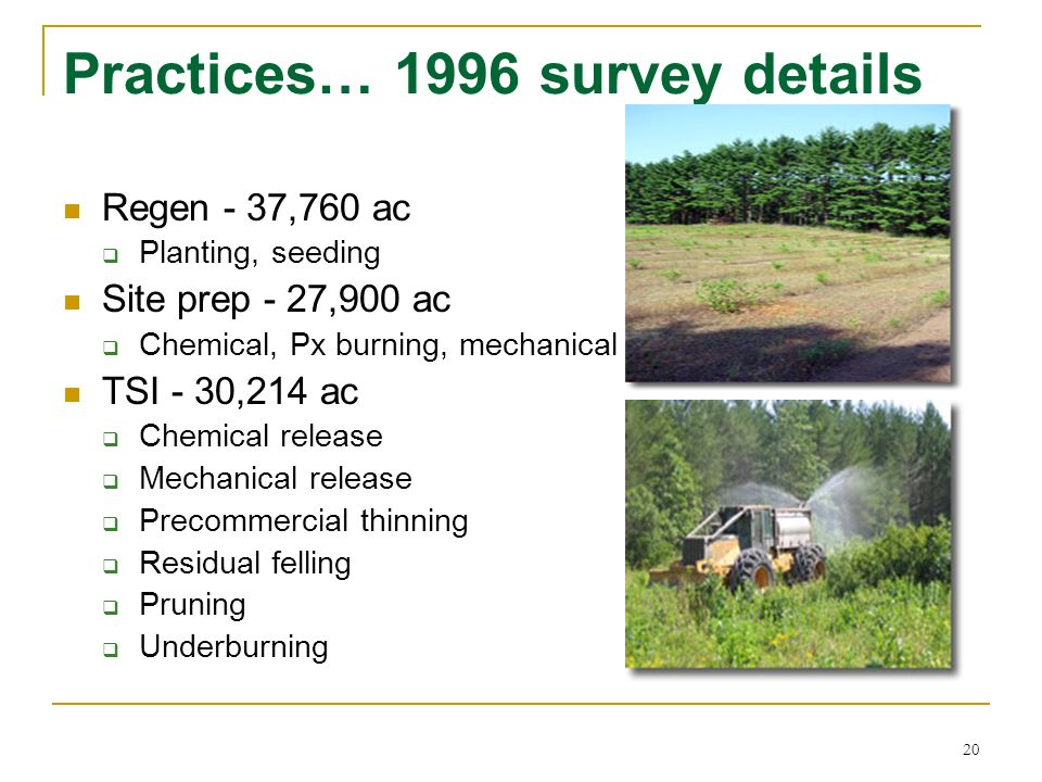 20 Practices… 1996 survey details Regen - 37,760 ac Planting, seeding Site prep - 27,900 ac Chemical, Px burning, mechanical TSI - 30,214 ac Chemical