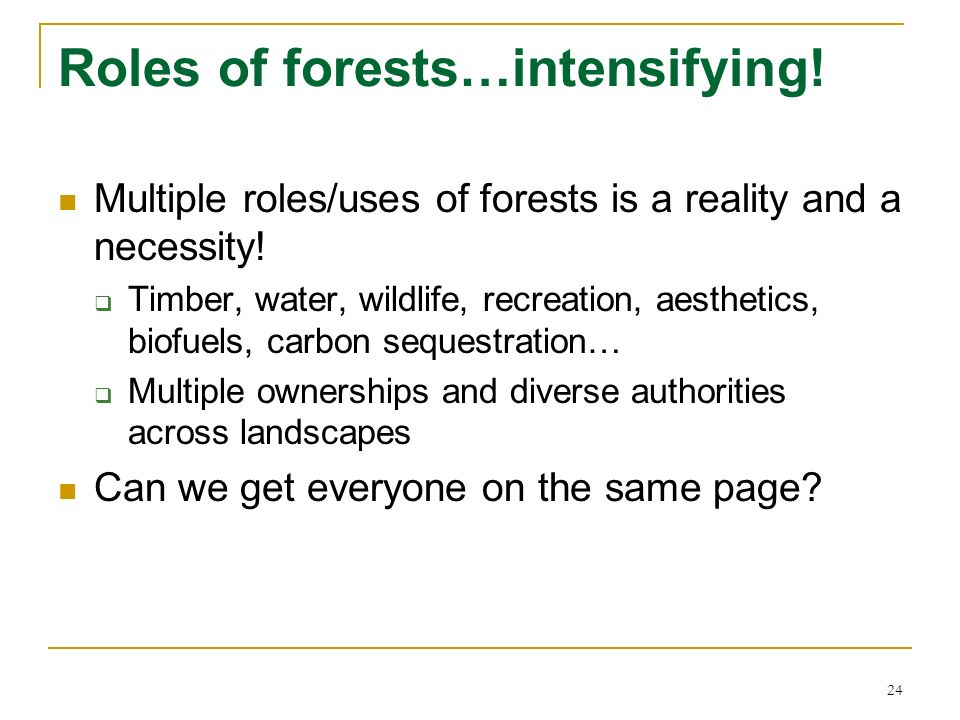 24 Roles of forests…intensifying! Multiple roles/uses of forests is a reality and a necessity! Timber, water, wildlife, recreation, aesthetics, biofue