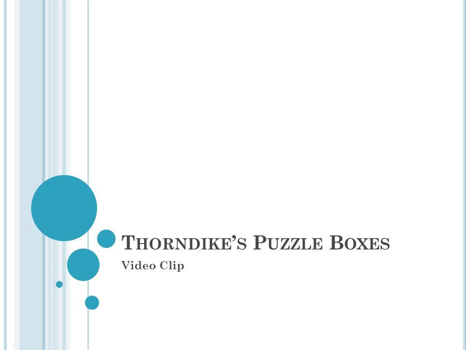 T HORNDIKE S P UZZLE B OXES Video Clip