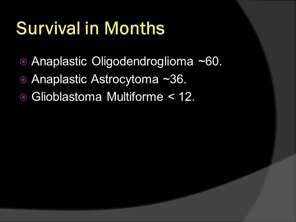 Survival in Months Anaplastic Oligodendroglioma ~60. Anaplastic Astrocytoma ~36. Glioblastoma Multiforme < 12.