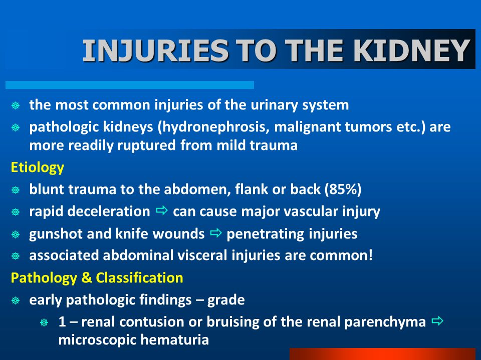 INJURIES TO THE KIDNEY the most common injuries of the urinary system pathologic kidneys (hydronephrosis, malignant tumors etc.) are more readily rupt