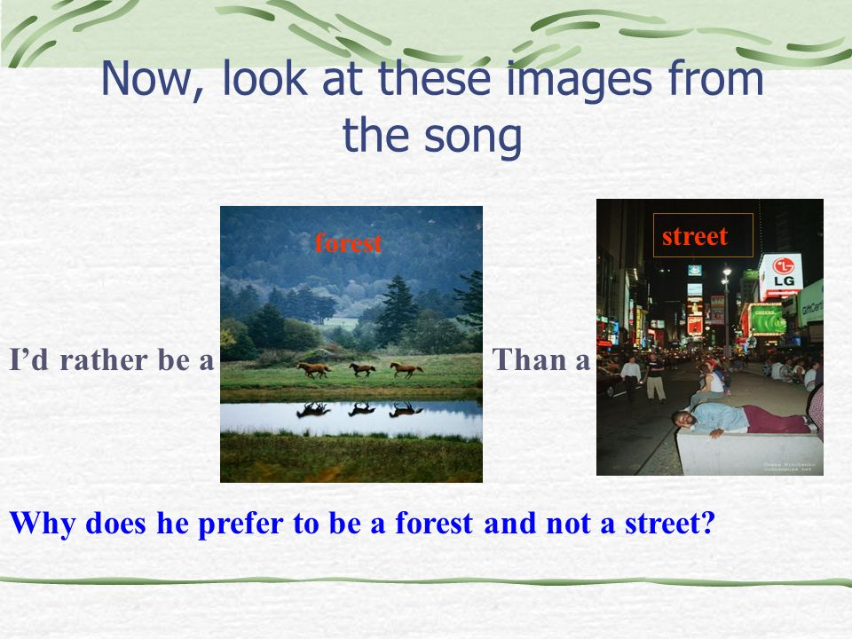 Now, look at these images from the song Id rather be aThan a Why does he prefer to be a forest and not a street? street forest