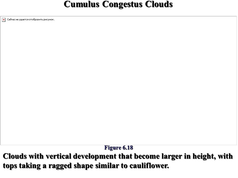 Cumulus Congestus Clouds Figure 6.18 Clouds with vertical development that become larger in height, with tops taking a ragged shape similar to caulifl