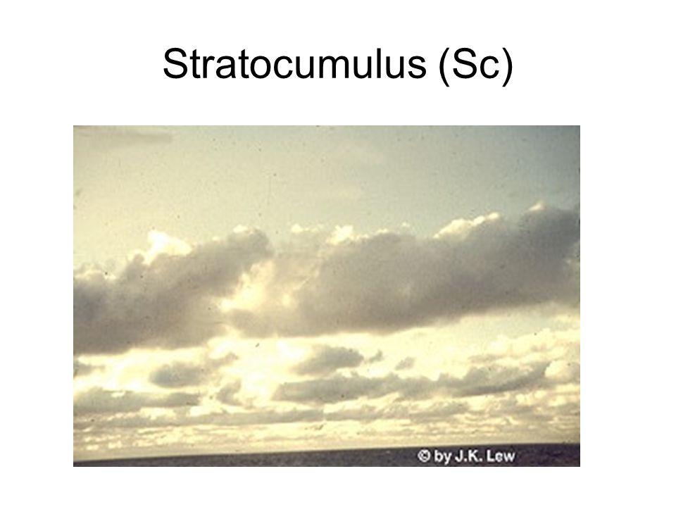 Stratocumulus (Sc)