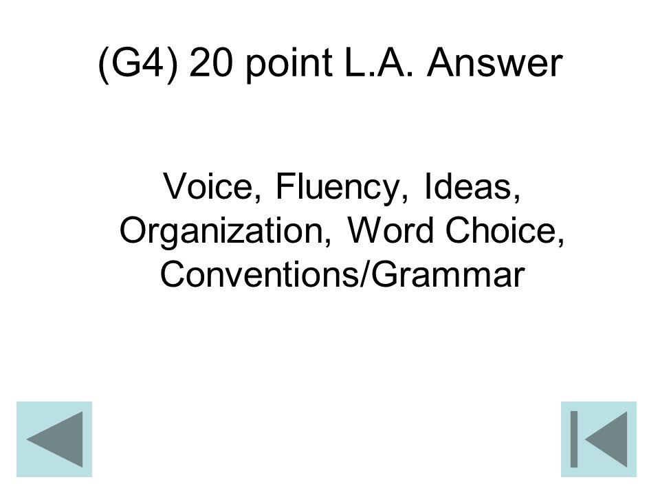 (G4) 20 point L.A. Answer Voice, Fluency, Ideas, Organization, Word Choice, Conventions/Grammar