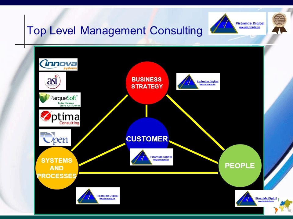 Top Level Management Consulting BUSINESS STRATEGY SYSTEMS AND PROCESSES CUSTOMER PEOPLE