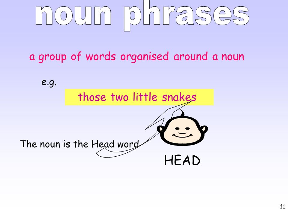 11 those two little snakes HEAD a group of words organised around a noun e.g. The noun is the Head word
