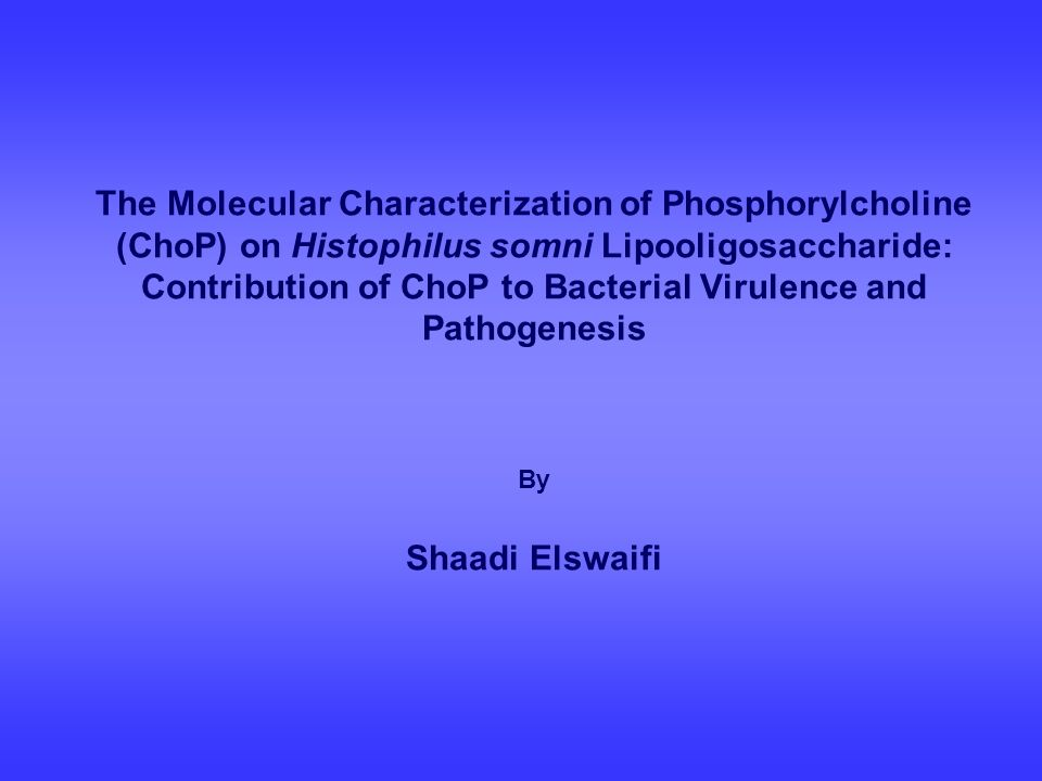 The Molecular Characterization of Phosphorylcholine (ChoP) on Histophilus somni Lipooligosaccharide: Contribution of ChoP to Bacterial Virulence and P