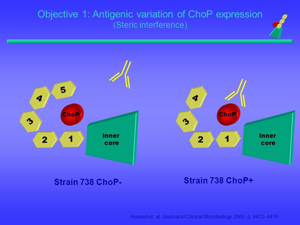 1 2 3 4 ChoP Inner core Strain 738 ChoP+ 1 2 3 4 5 ChoP Inner core Strain 738 ChoP- Howard et. al. Journal of Clinical Microbiology, 2000, p. 4412–441