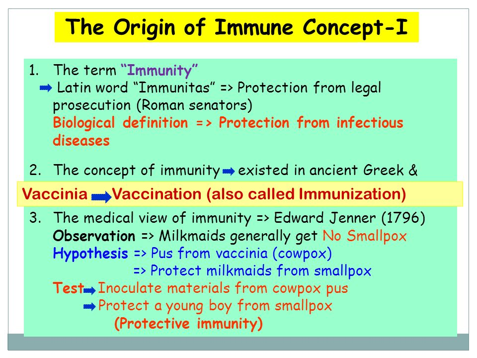 A Short History of Immunology ~ 430 B.C: Thucydides describes plague – the ones who had recovered from the disease could nurse the sick without getting the disease a second time 15th centurry: Chinese and Turks use dried crusts of smallpox as vaccine 1798: Edward Jenner – smallpox vaccine In 1670, Chinese medical practitioners : variolation