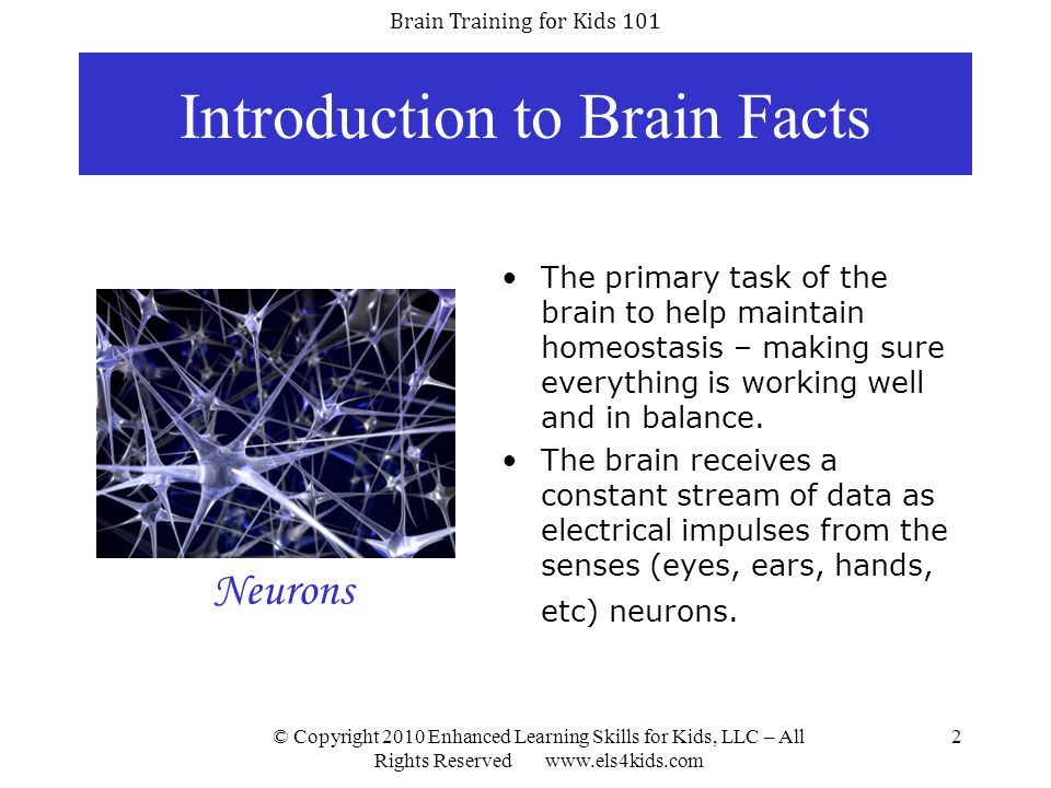 Brain Training for Kids 101 © Copyright 2010 Enhanced Learning Skills for Kids, LLC – All Rights Reserved www.els4kids.com 13 Steps Involved in Learning