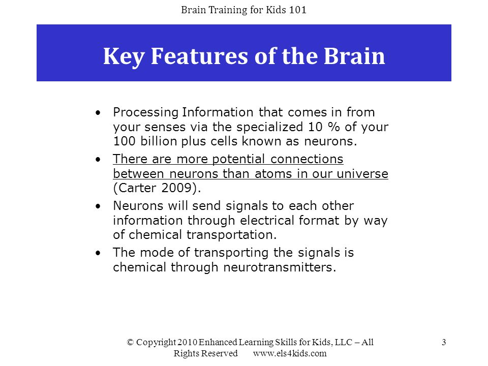 Brain Training for Kids 101 © Copyright 2010 Enhanced Learning Skills for Kids, LLC – All Rights Reserved www.els4kids.com 14 Cognitive Skills Needed for Reading Memory (ability to remember the sound-symbol relationship) Sound Segmenting (ability to separate or unglue sounds) Sound Blending (ability to put together sounds to form words) Auditory Analysis (ability to manipulate or analyze small changes in groups of sounds) Processing Speed (ability to process information quickly) Working Memory (ability to retain incoming information and process it quickly and properly) Attention (ability to stay on the given task in spite of distraction) Visualization (ability to create and use mental images) Reading Fluidity (ability to read smoothly) Logic and Reasoning (ability to nonverbally reason and solve problems)