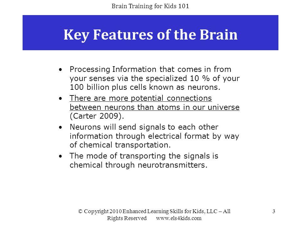 Brain Training for Kids 101 © Copyright 2010 Enhanced Learning Skills for Kids, LLC – All Rights Reserved www.els4kids.com 24 Fast ForWord FF Language Basics FF Language V2 FF Language to Reading