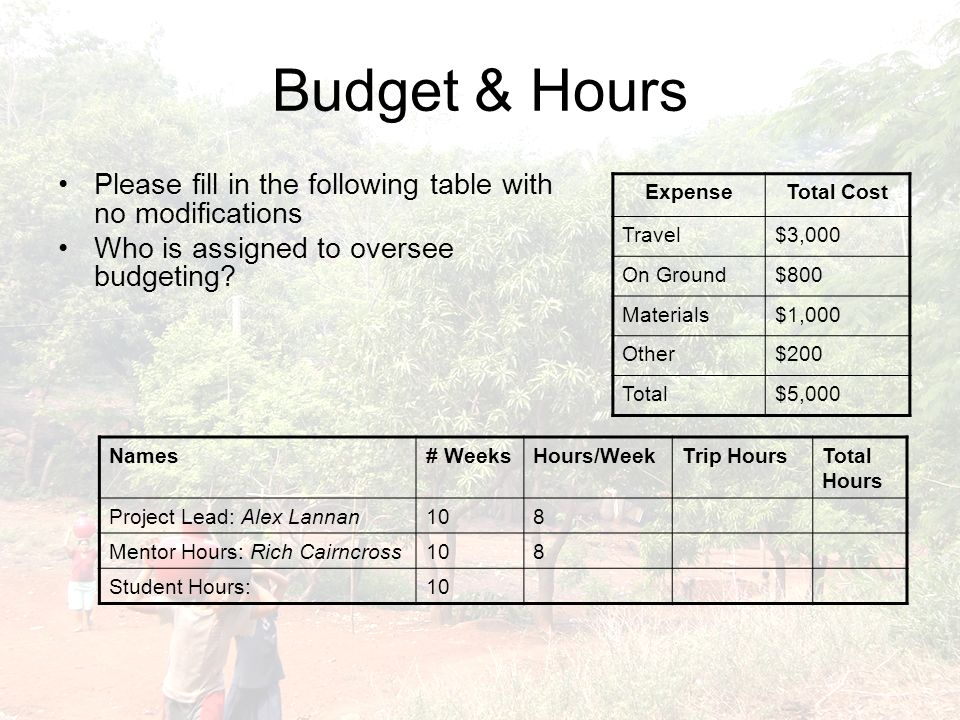 Budget & Hours Please fill in the following table with no modifications Who is assigned to oversee budgeting? ExpenseTotal Cost Travel$3,000 On Ground