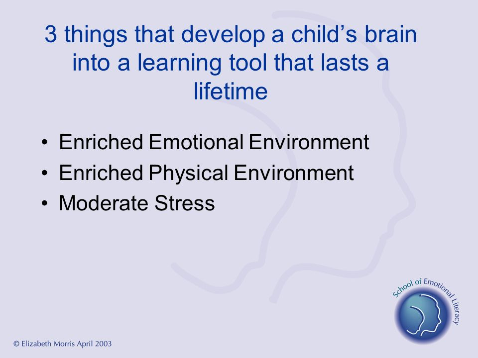 3 things that develop a childs brain into a learning tool that lasts a lifetime Enriched Emotional Environment Enriched Physical Environment Moderate