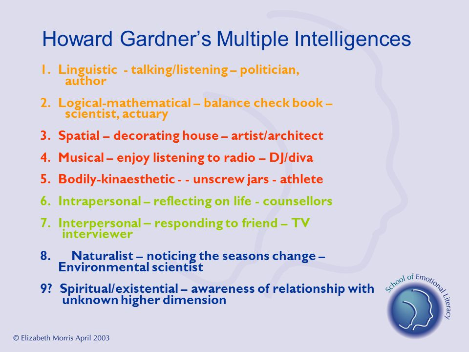 Howard Gardners Multiple Intelligences 1. Linguistic - talking/listening – politician, author 2. Logical-mathematical – balance check book – scientist