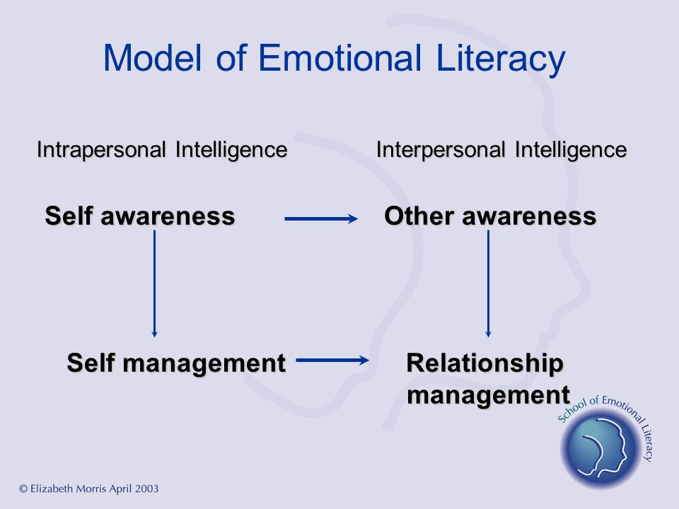 Model of Emotional Literacy Intrapersonal IntelligenceInterpersonal Intelligence Self awarenessOther awareness Self managementRelationship management