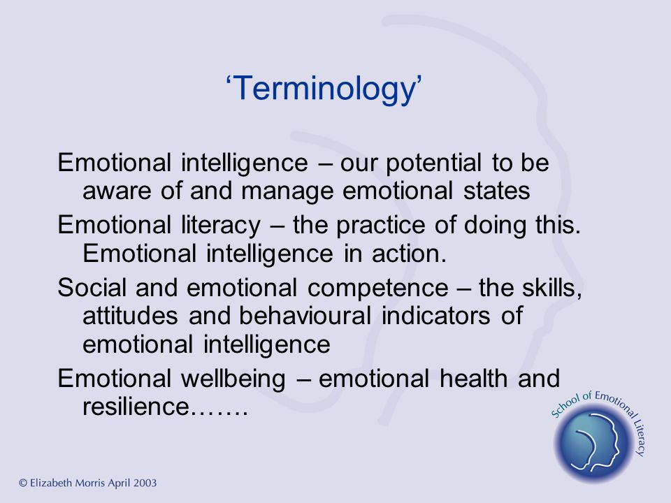 Terminology Emotional intelligence – our potential to be aware of and manage emotional states Emotional literacy – the practice of doing this. Emotion