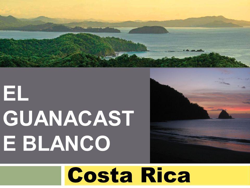 EL GUANACAST E BLANCO Costa Rica