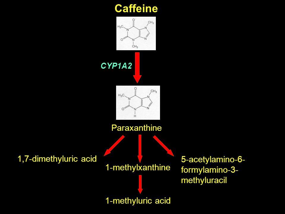Caffeine CYP1A2 1-methylxanthine 1-methyluric acid 5-acetylamino-6- formylamino-3- methyluracil 1,7-dimethyluric acid Paraxanthine
