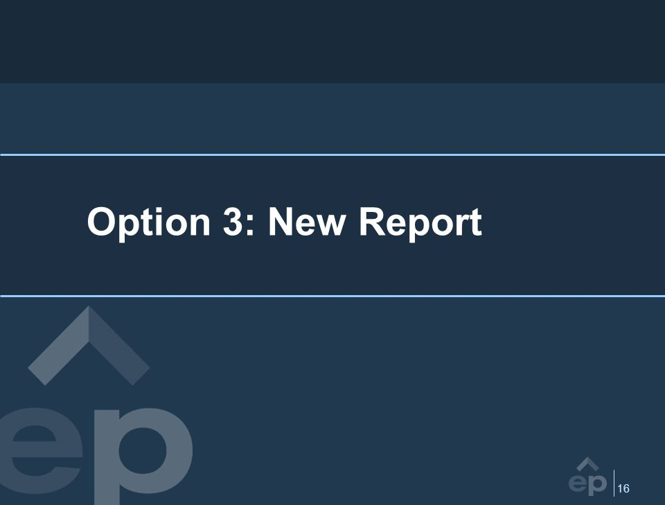 16 Option 3: New Report