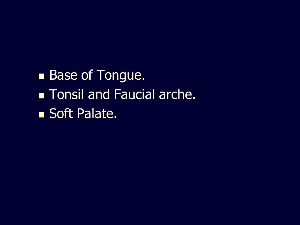 Base of Tongue. Base of Tongue. Tonsil and Faucial arche. Tonsil and Faucial arche. Soft Palate. Soft Palate.