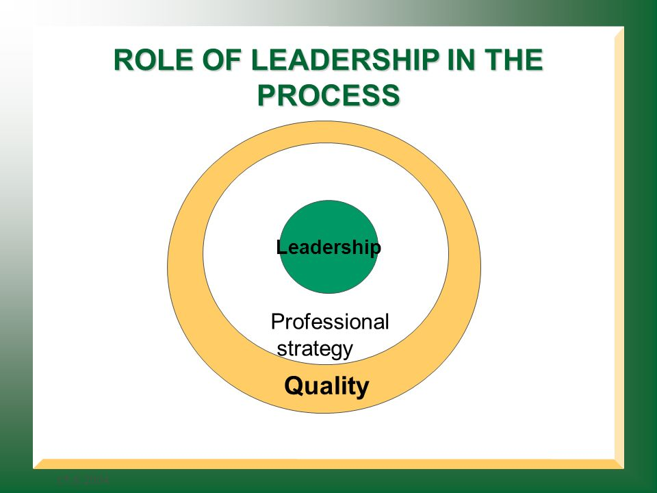 ROLE OF LEADERSHIP IN THE PROCESS Quality Professional strategy Leadership
